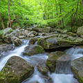 Jacobs Fork River Cascades In South Mountain  by Ranjay Mitra