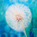Jade Dandelion by Ruth Harris