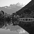 Jade Dragon Snow Mountain by Michele Burgess