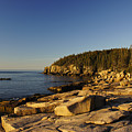Jagged Coast Of Maine by Brian Kamprath