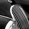 Jaguar Grille Black And White by Jill Reger