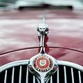 Jaguar Grille by Helen Northcott