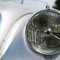 Jaguar Head Lamp by Helen Northcott