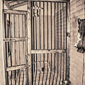 Jail House Interior by Pamela Williams