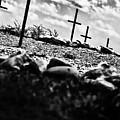 Jamestown Cemetery by Bill Cannon