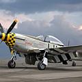 Janie P-51 by Gill Billington