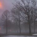 January Fog 3 by Anita Burgermeister