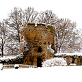 January Snow In England  by Ruth  Housley