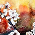 Japanese Cherry Blossom Abstract Flowers by Derek Mccrea