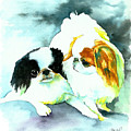 Japanese Chin Dog by Christy  Freeman