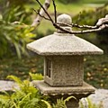 Japanese Friendship Garden 1 by Marta Robin Gaughen