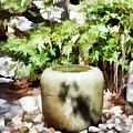 Japanese Garden 6 by Jeelan Clark