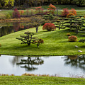 Japanese Garden Autumn by Lindley Johnson