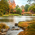 Japanese Garden Bridge Fall by David Coblitz