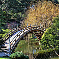 Japanese Garden Bridge by Tommy Anderson