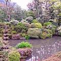 Japanese Garden by David Rucker