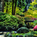Japanese Garden by Harry Spitz