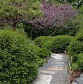 Japanese Garden I by Kathy Schumann