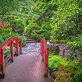 Japanese Garden by Jacqui Boonstra