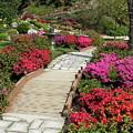 Japanese Garden by Jeanette Oberholtzer