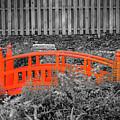 Japanese Garden by Jeff Chapman