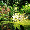 Japanese Garden by Jerome Stumphauzer