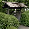 Japanese Garden by Kathy Schumann