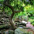 Japanese Garden by Kristin Elmquist