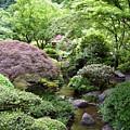 Japanese Garden by Loretta Luglio