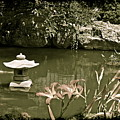 Japanese Garden by Michael Peychich