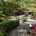 Japanese Garden Path With Azaleas by Carol Groenen