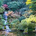 Zen Japanese Garden by Sonal Dave