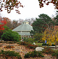 Japanese Garden Roger Williams Park by Barbara McDevitt