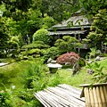 Japanese Garden Teahouse by Carol Groenen