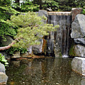 Japanese Garden V by Kathy Schumann