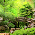 Japanese Garden - Water Under The Bridge by Mike Savad
