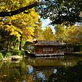 Japanese Gardens 2541a by Ricardo J Ruiz de Porras