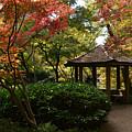 Japanese Gardens 2577 by Ricardo J Ruiz de Porras