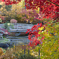 Japanese Gardens by Idaho Scenic Images Linda Lantzy