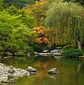 Japanese Gardens by Mike Reid