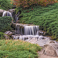 Japanese Gardens Waterfall by Helen Woodford