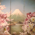 Japanese Spring by Sorin Apostolescu