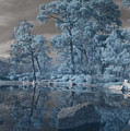 Japanese Tea Garden Infrared Center by Joshua House