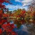 Japanese Zen Garden by Joy of Life Art Gallery