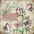 Jardin De Tulipes by Mindy Sommers