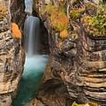 Jasper Maligne Canyon Waterfall by Adam Jewell