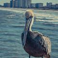 Jax Beach  by Rockland Filmworks