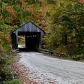 Jaynes Covered Bridge by Carolyn Mickulas