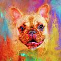 Jazzy French Bulldog Colorful Dog Art By Jai Johnson by Jai Johnson