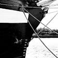 Jeanie Johnston Dublin 2 by Lexa Harpell